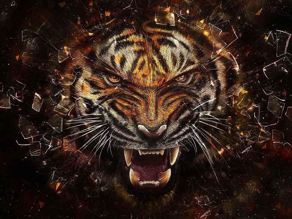 دانلود کانفیگ ایم و هدشات Tiger - ( رایگان ! )